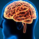 Klinische Formen Multipler Sklerose